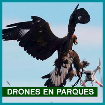 problemas con los drones